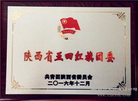 我公司共青团工作受到上级多项表彰奖励
